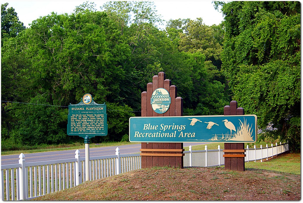 Entrance to Blue Springs on Blue Springs Road, off Highway 71 North, Jackson County, Florida