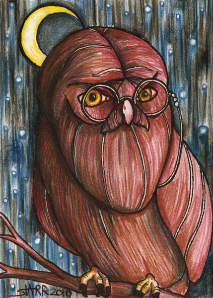 Harry Bearded Owl © Starr Shumaker