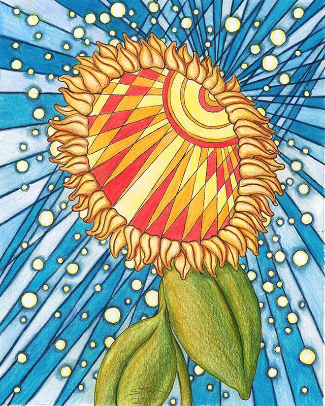 Sunflower © Starr Shumaker